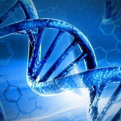 Methylation Profile Functional Testing