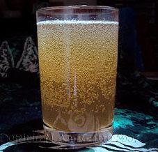 ginger-water-kefir