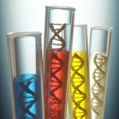 MTHFR Gene test Elemental Functional Testing