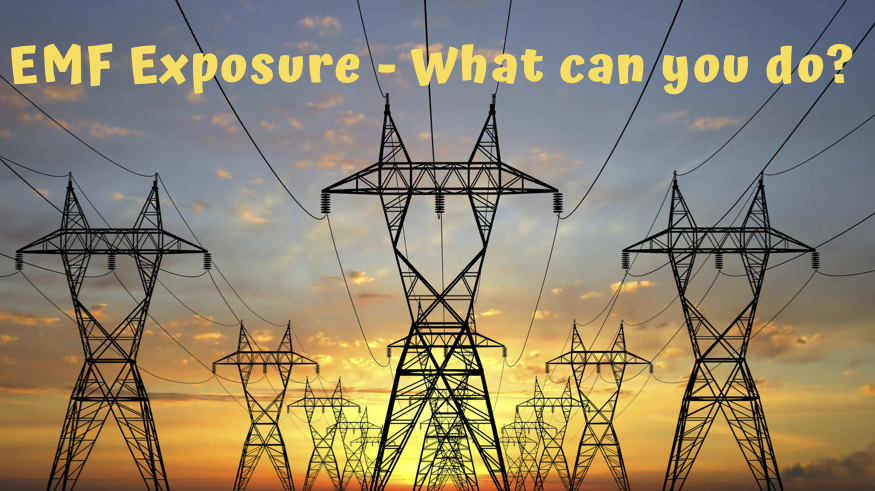 EMF Exposure and Free Radical Damage – What can you do?